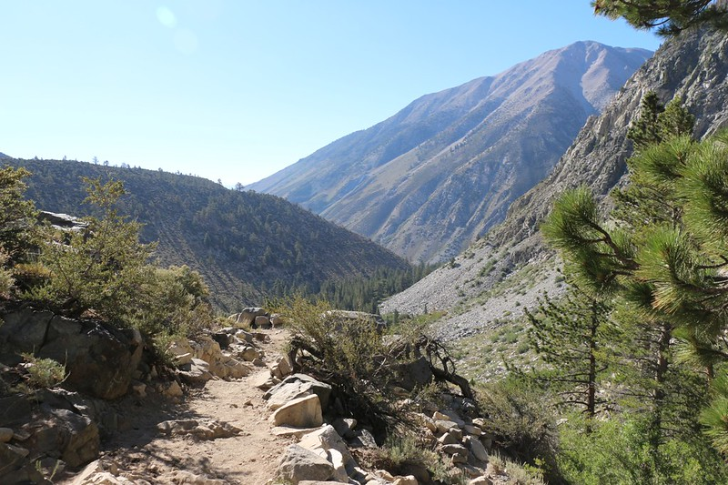 Kid Mountain on the right, and the forest down below is where First Falls begins - picture taken from Second Falls