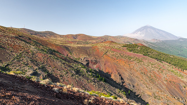 On the way to Teide