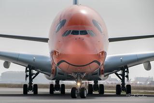 """F-WWAL // JA383A ANA ALL NIPPON AIRWAYS AIRBUS A380-841 msn 266 """"Ka La"""""""