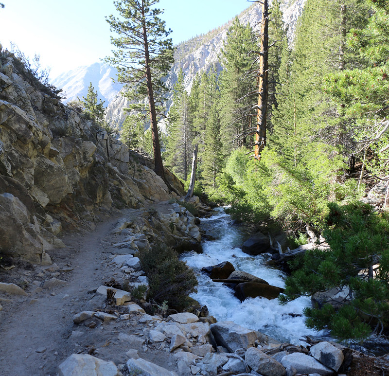The creek and trail narrow as it prepares to plunge over Second Falls on the NF Big Pine Creek Trail