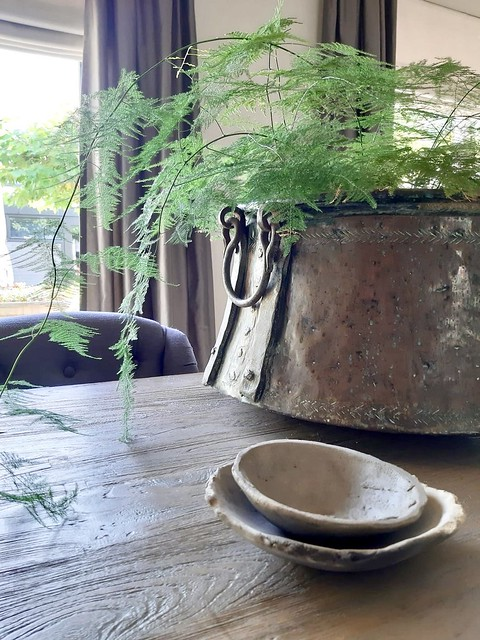 Asparagusplant in koperen pot schalen keramiek