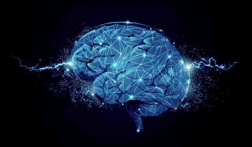 la-conscience-seait-le-champ-énergétique-du-cerveau