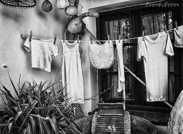 La colada/The laundry