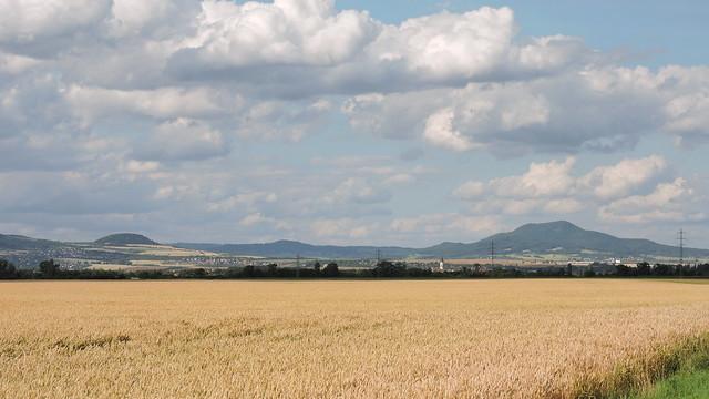 2015-07-08 Landscape 1