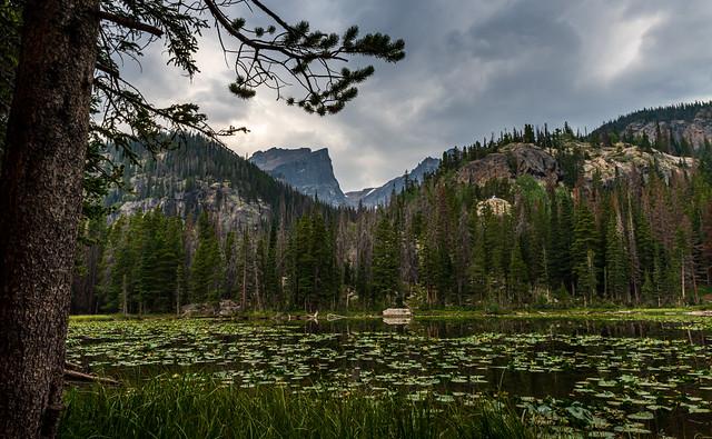 Serenity at Nymph Lake