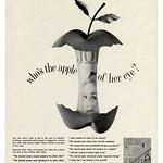 Wed, 2020-10-21 21:50 - Ladies Home Journal (1961)
