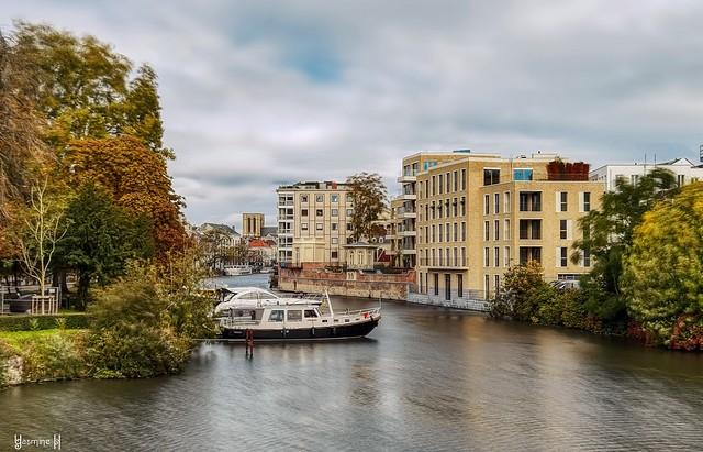 #Ghent Lys  - 8993