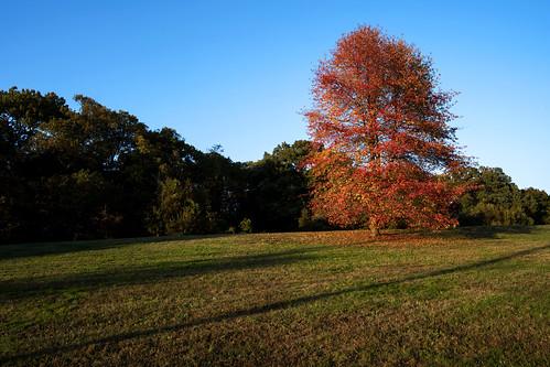 Fort Slocum Park