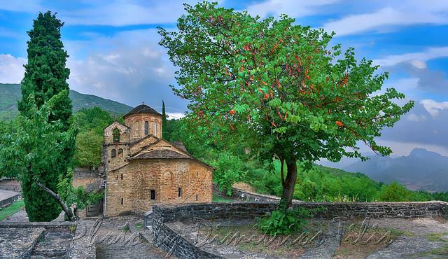 Το δέντρο που προσκυνάει The tree that kowtows