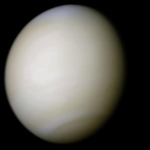 A Vénusz