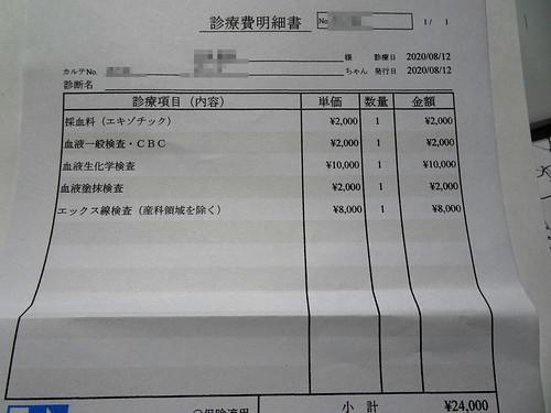 コザクラインコの食欲を回復させる病院の費用