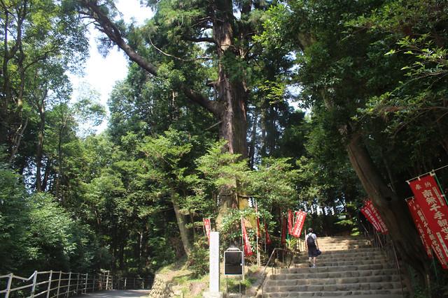 shiofunekannon006