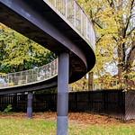 Autumn by the footbridge at Preston