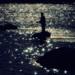 """<p><a href=""""https://www.flickr.com/people/190681161@N03/"""">telesfor2</a> posted a photo:</p>  <p><a href=""""https://www.flickr.com/photos/190681161@N03/50515594751/"""" title=""""003_1993_San River_Angler""""><img src=""""https://live.staticflickr.com/65535/50515594751_cd8e251c09_m.jpg"""" width=""""240"""" height=""""158"""" alt=""""003_1993_San River_Angler"""" /></a></p>  <p>Poland<br /> Summer 1996 San River<br /> Praktica BX20<br /> Prakticar 135/2,8<br /> Fujichrome Velvia 50<br /> Cokin Diffuser Filter<br /> Scanner Minolta Dimage 5400</p>"""