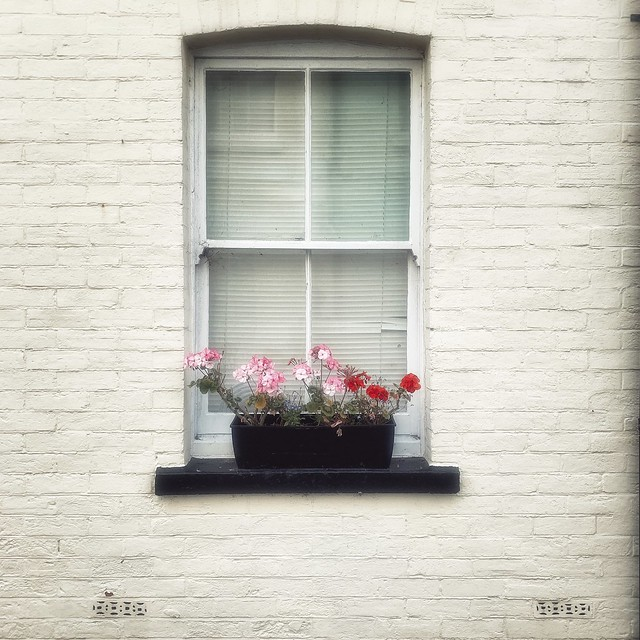 A Weymouth Window