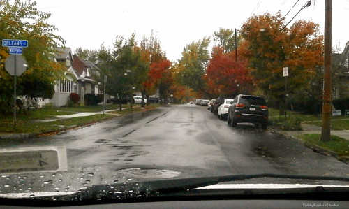 Gloomy Fall in the City | by cordeliasmom2012