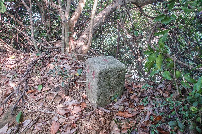 竹寮巷山西南峰水資會三等三角點(# 高屏61 Elev. 163 m) (2)