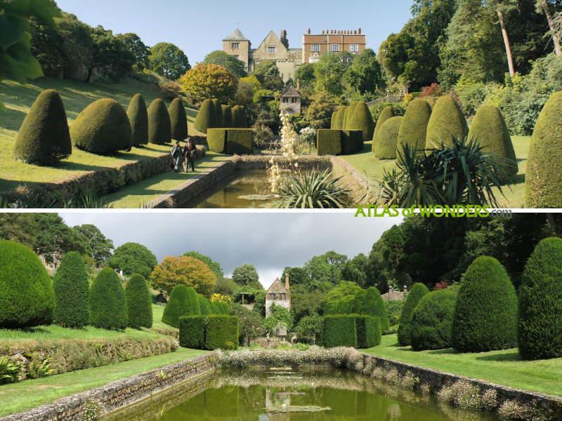 Manderley Garden