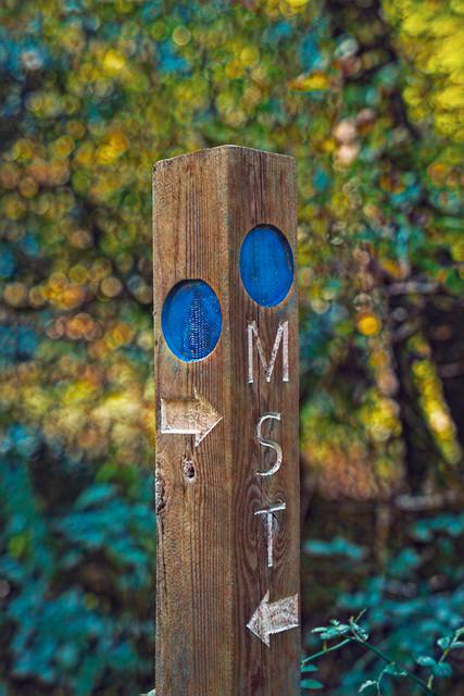 The Mountains-to-Sea Trail (Blue Ridge Parkway, Asheville NC)