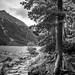 "<p><a href=""https://www.flickr.com/people/181766588@N05/"">Blaze B.</a> posted a photo:</p>  <p><a href=""https://www.flickr.com/photos/181766588@N05/50516385702/"" title=""Tatra Mountains""><img src=""https://live.staticflickr.com/65535/50516385702_8e48673a01_m.jpg"" width=""160"" height=""240"" alt=""Tatra Mountains"" /></a></p>"