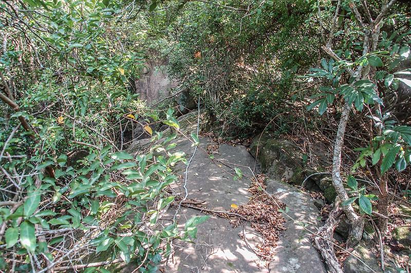 旗美山第二段裸岩段