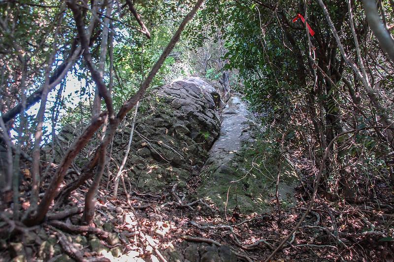 旗美山第一段裸岩段