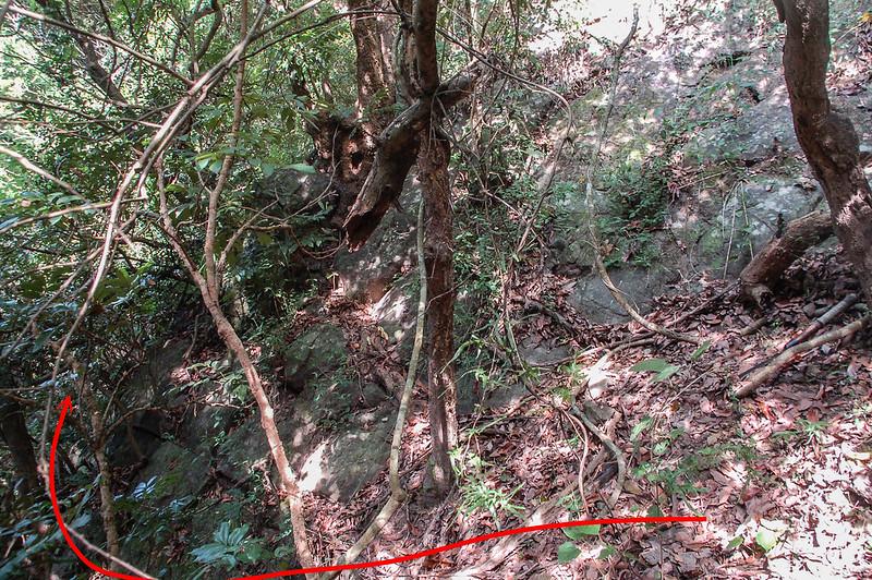 竹寮巷山西南峰石壁地形 (1)