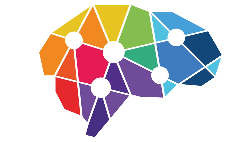 Fragments of colour segmented by a white network of lines forming the shape of a brain.