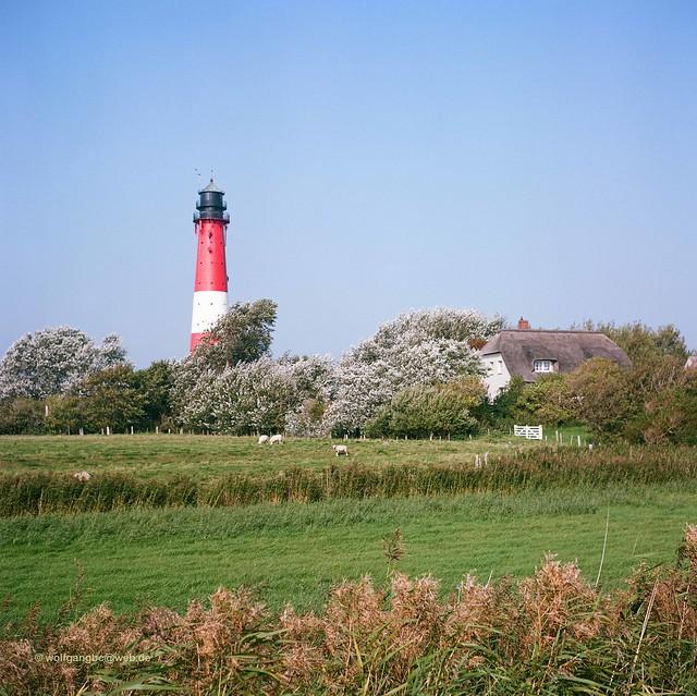 Pellwormer Leuchtturm