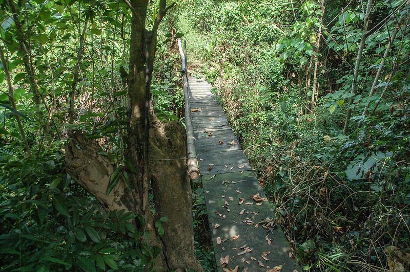 杉林南總督府土木局水準點登山窄橋