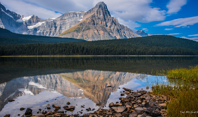2020 - BC-AB Road Trip - 56 of 214 - Driving The Icefields Parkway - Waterfowl Lakes - 3 of 3