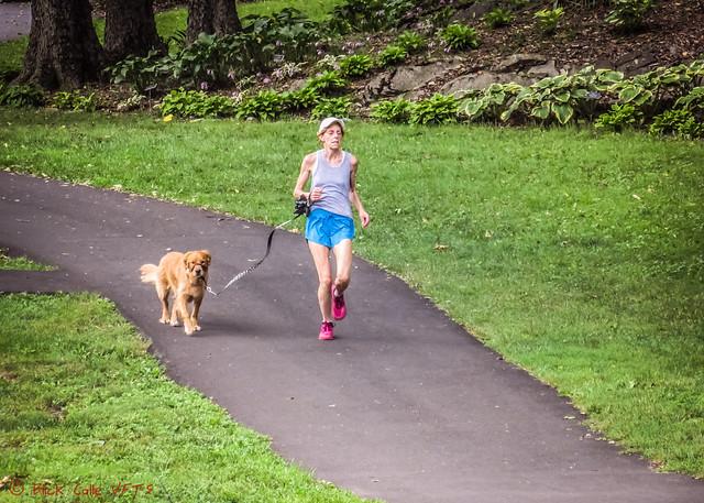 Running The Dog
