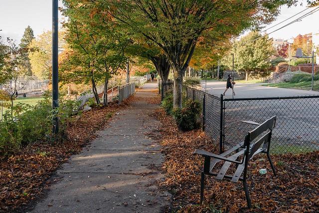 autumn hoops
