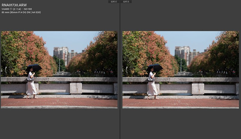 |SIGMA 85mm DG DN ART