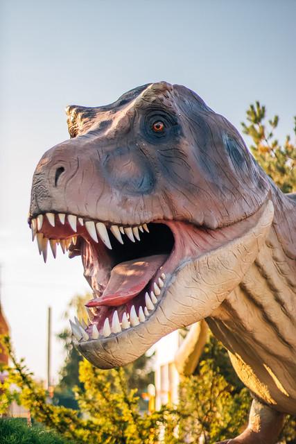 Statue of a tyrannosaurus rex in a dinosaur park