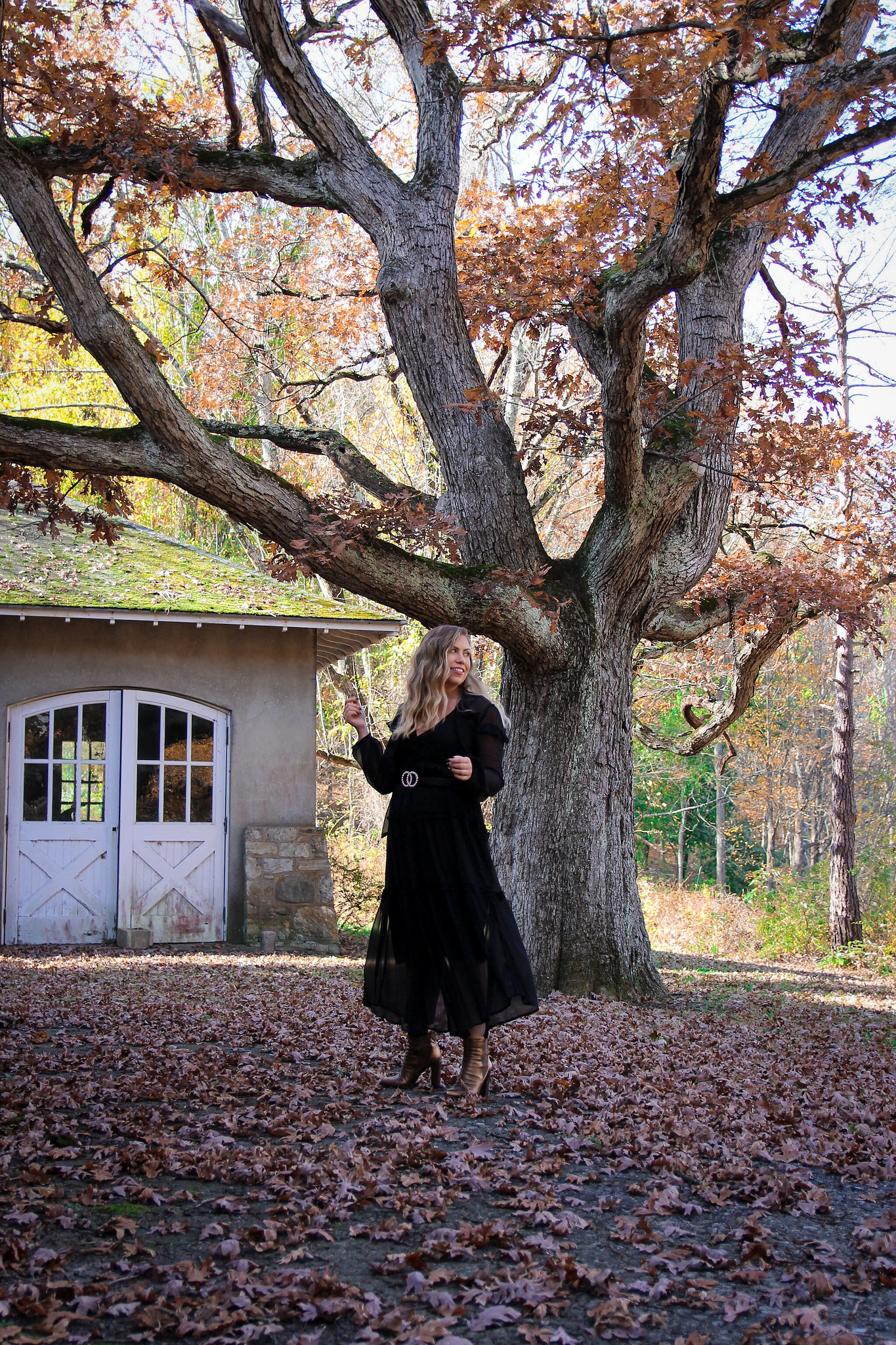 Long Black Sheer Dress Fall Photoshoot in New York | Fall Foliage | Westchester County NY Merestead | Whimsical Photoshoot Inspiration
