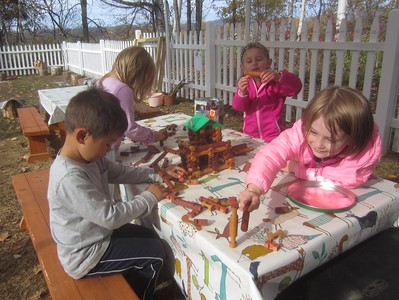 building trees around the log cabin