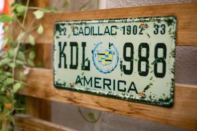 Cadillac America Vehicle Plate Number as Decoration next to Plants
