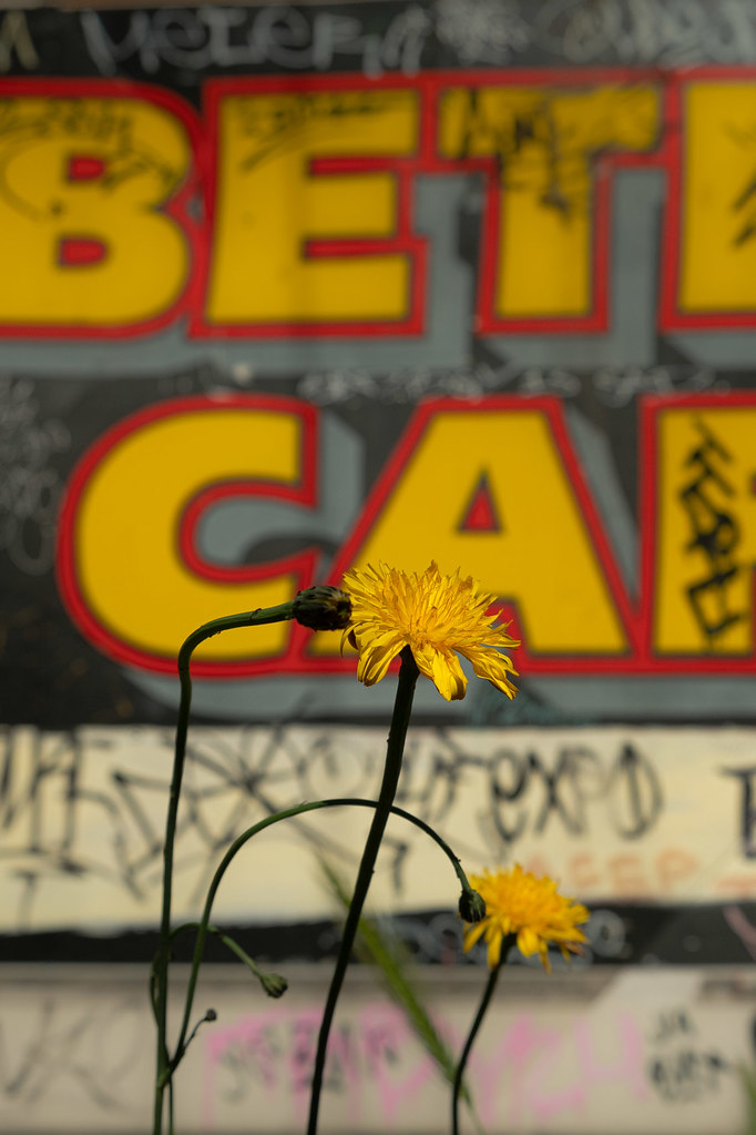 Beth's Cafe