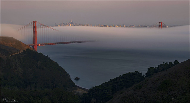 A Soft Blanket Pacifies the Golden Gate