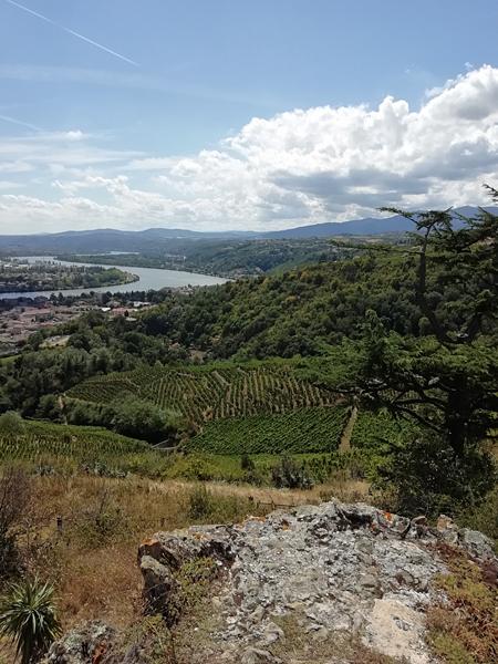 panorama sur le Rhône
