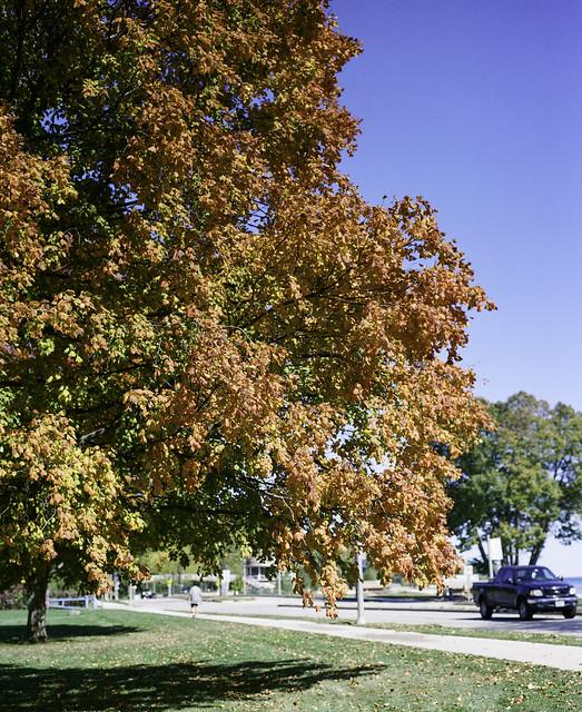 Lincoln Memorial Drive Orange