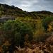 Blaenserchan and Llanerch Colliery in Autumn