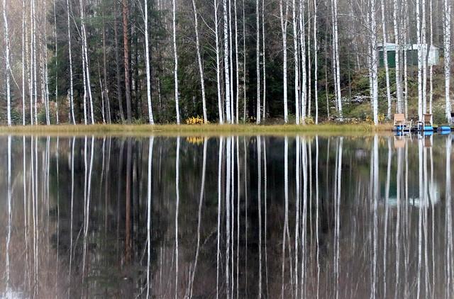 Hazy autumn pond landscape.