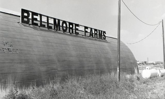 Bellmore (EXAKTA02-683)