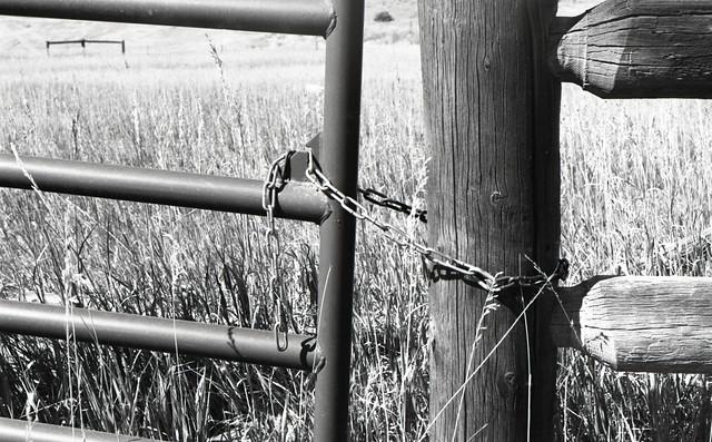 Chained (EXAKTA02-705)
