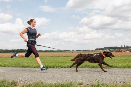 NÁVOD: Začněte běhat se psem. Základní pravidla a doporučení