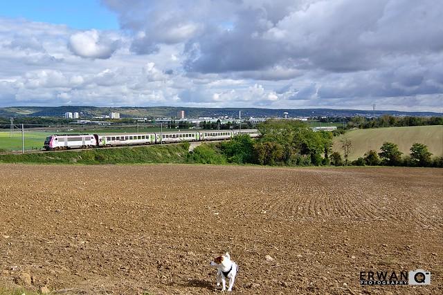 11/10/2020 - BB26013 + RC | Train n°3377 : Paris-St-Lazare > Trouville-Deauville