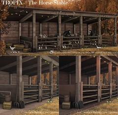 TROPIX //  The Horse Stable