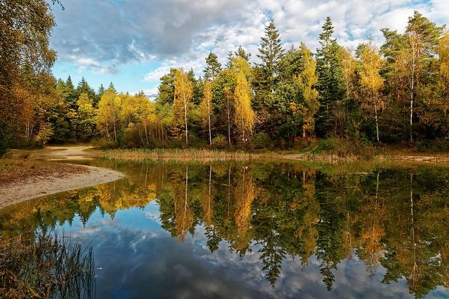 Herbstimpression am Silbersee